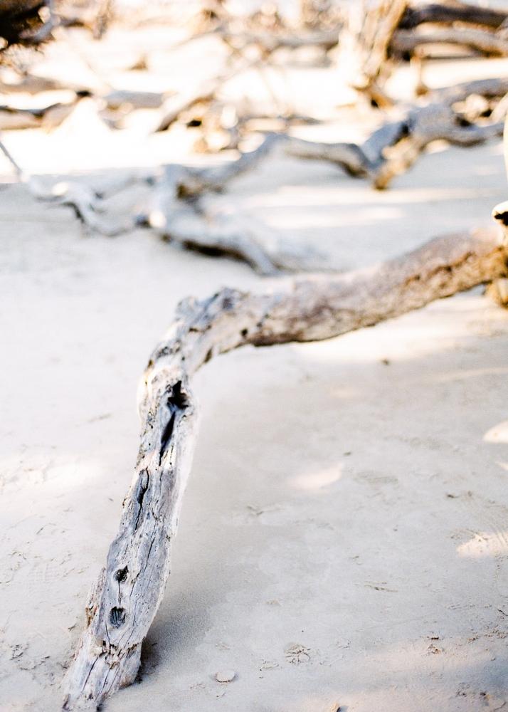 K. Driftwood Beach