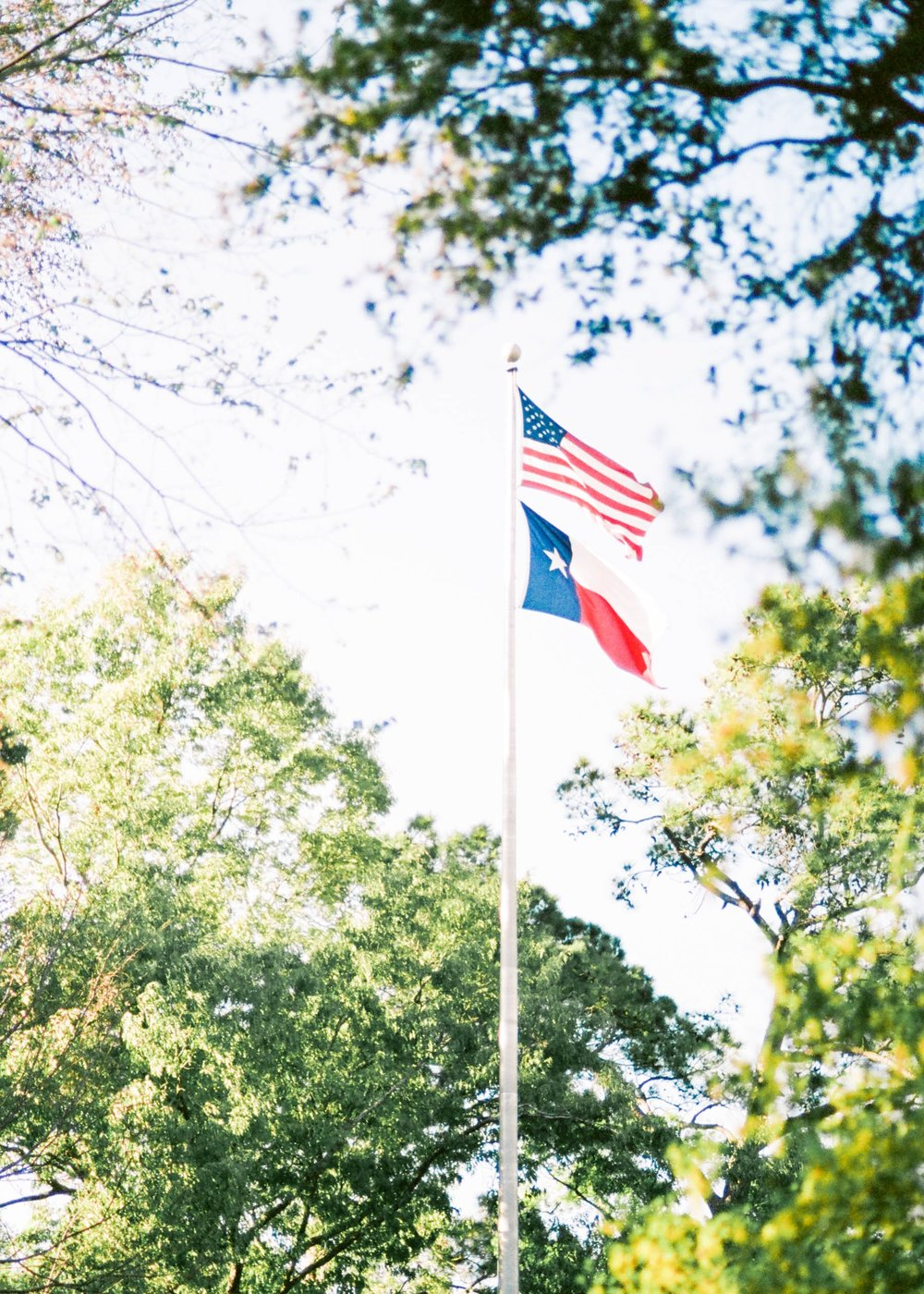 L.  Flags Over Houston