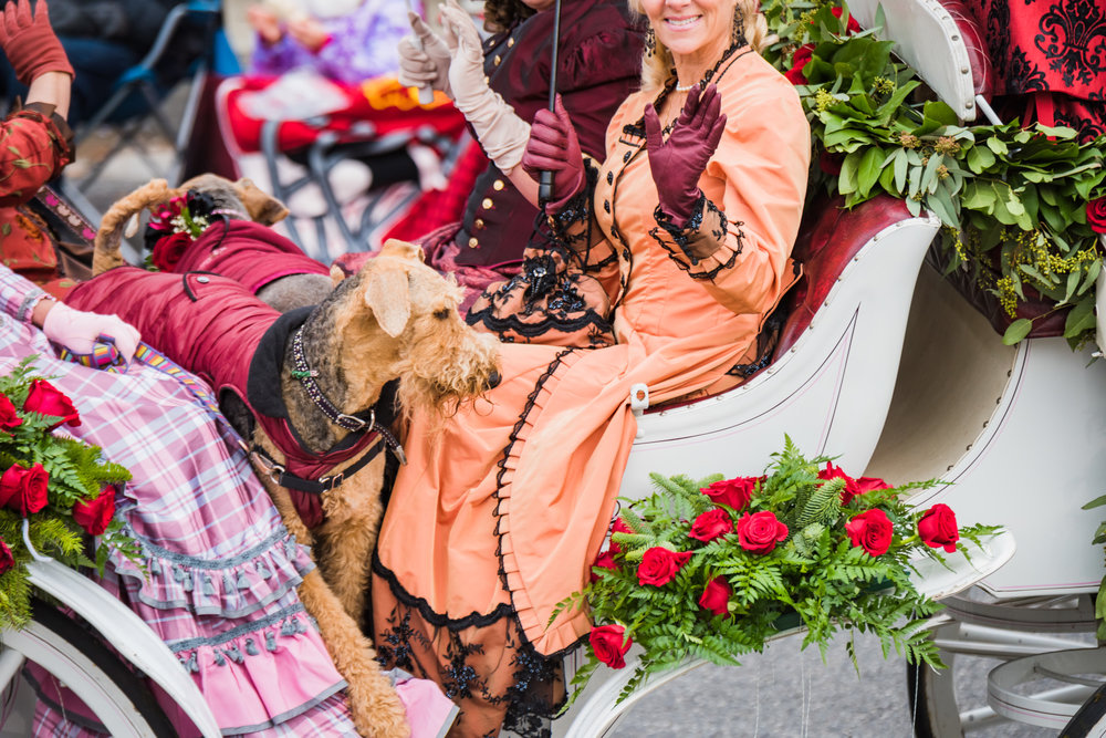 Rose Parade 2017-96.jpg