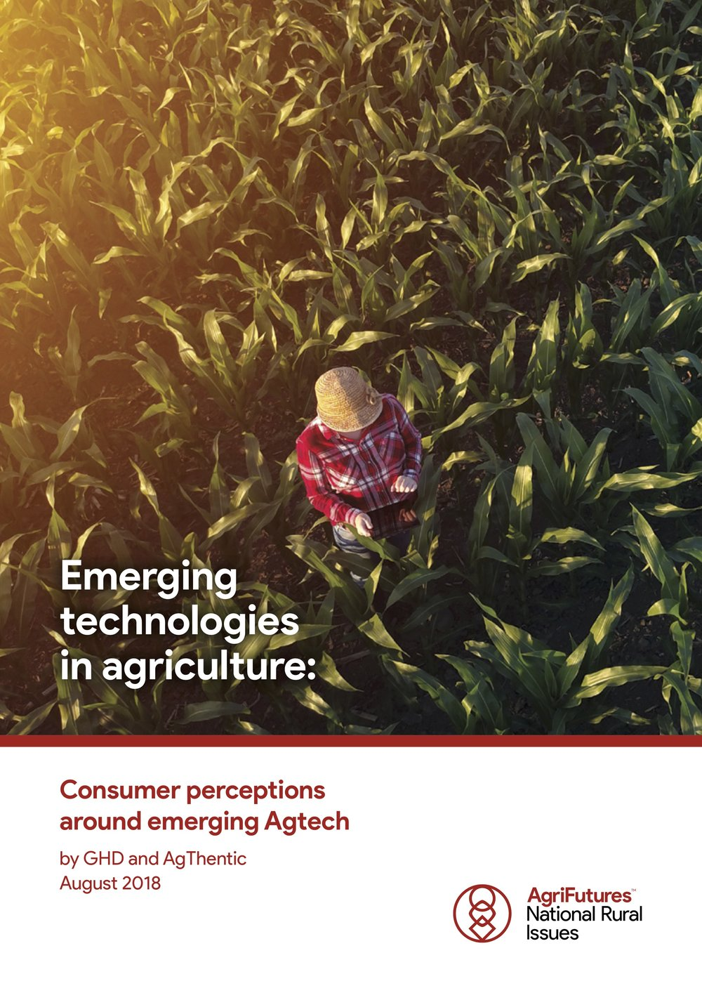 Emerging Technology Consumer Perceptions