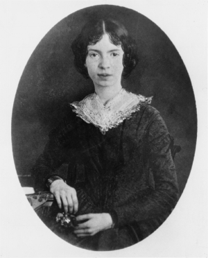 emily dickinson s poetry in relation to Many of dickinson's poems discuss female identity in relation to males and her own  in the emily dickinson's poem  documents similar to poetry analysis.