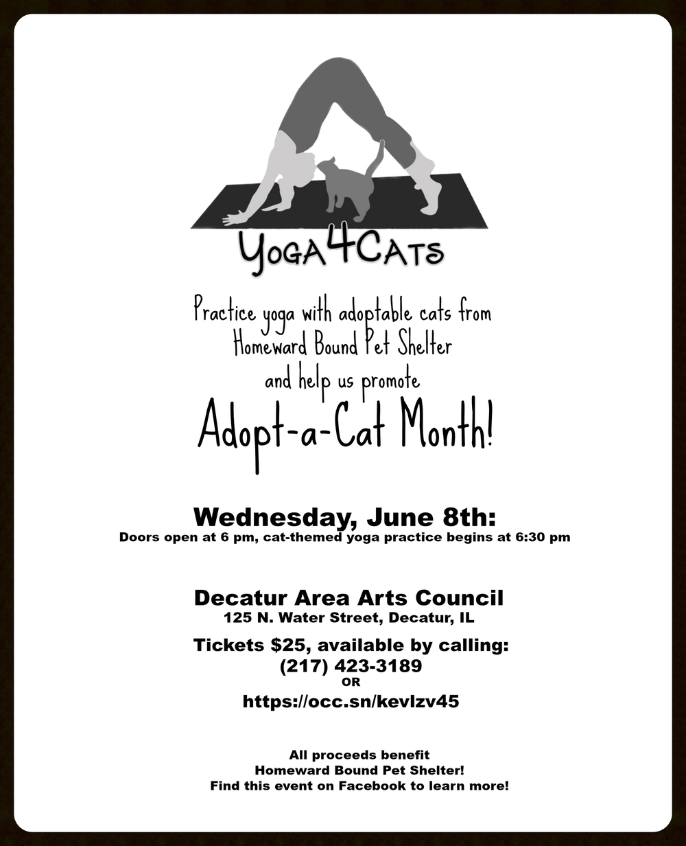 Yoga4Cats - Adopt a Cat Month!