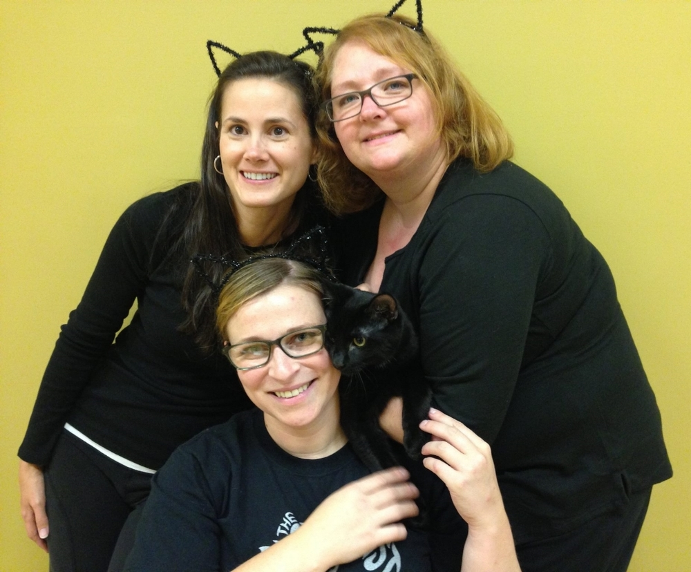 Jeanette, Misty & Erin with Sirius  at 2015's Yoga4Cats A Black Cat Affair!