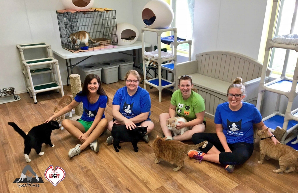 Team Yoga4Cats at the Humane Society of Decatur and Macon County.