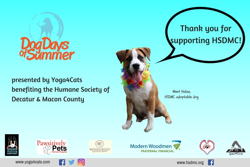 presented by Yoga4Catsbenefiting the Humane Society of Decatur & Macon County.jpg