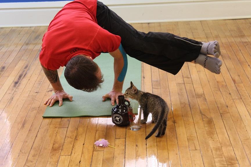 Chuck Beck Beer Yoga4Cats Beer Yoga 1.jpg