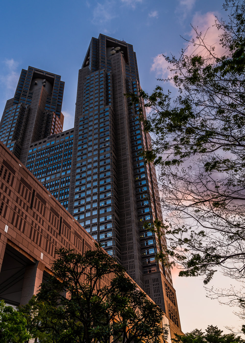 Tokyo Metropolitan Governmental building