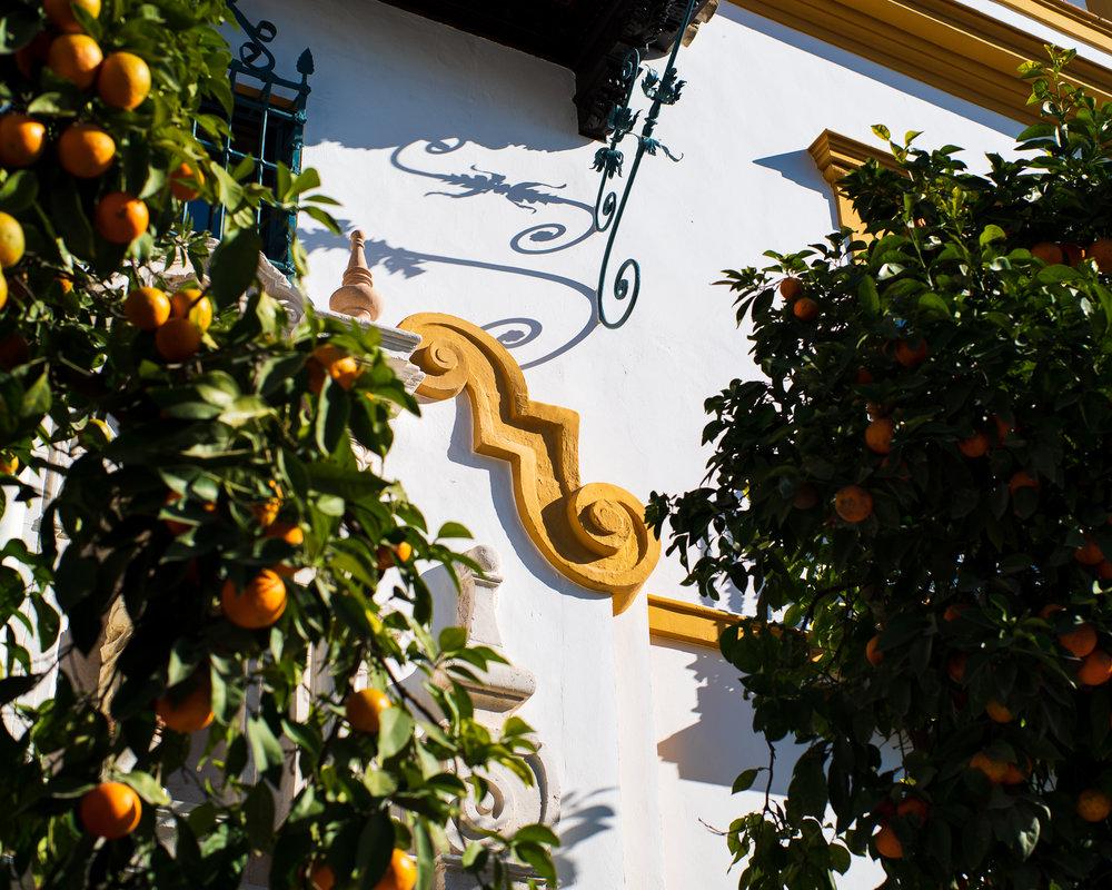 Sinaasappels, zon en wit geschilderde muren.