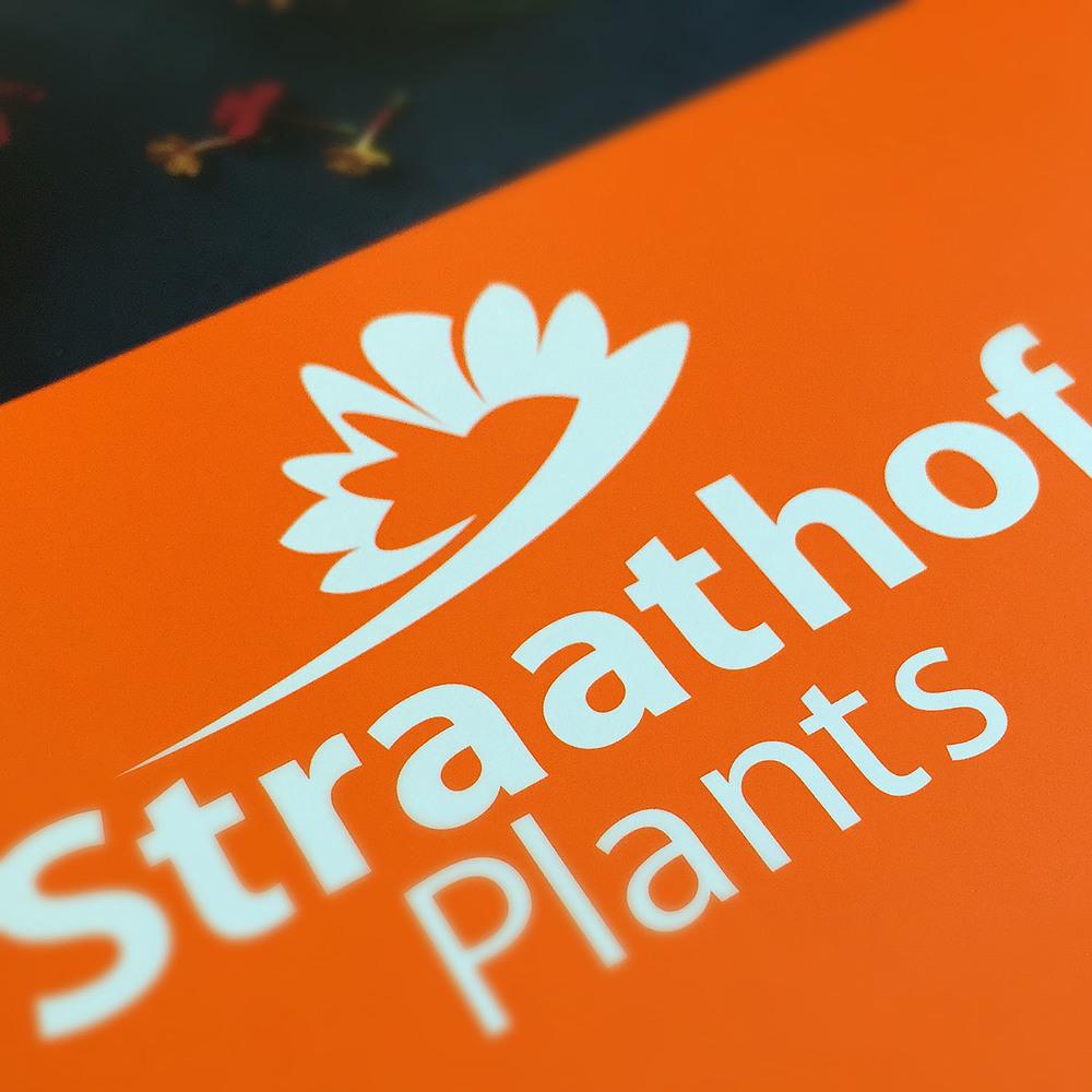 Straathof Plants