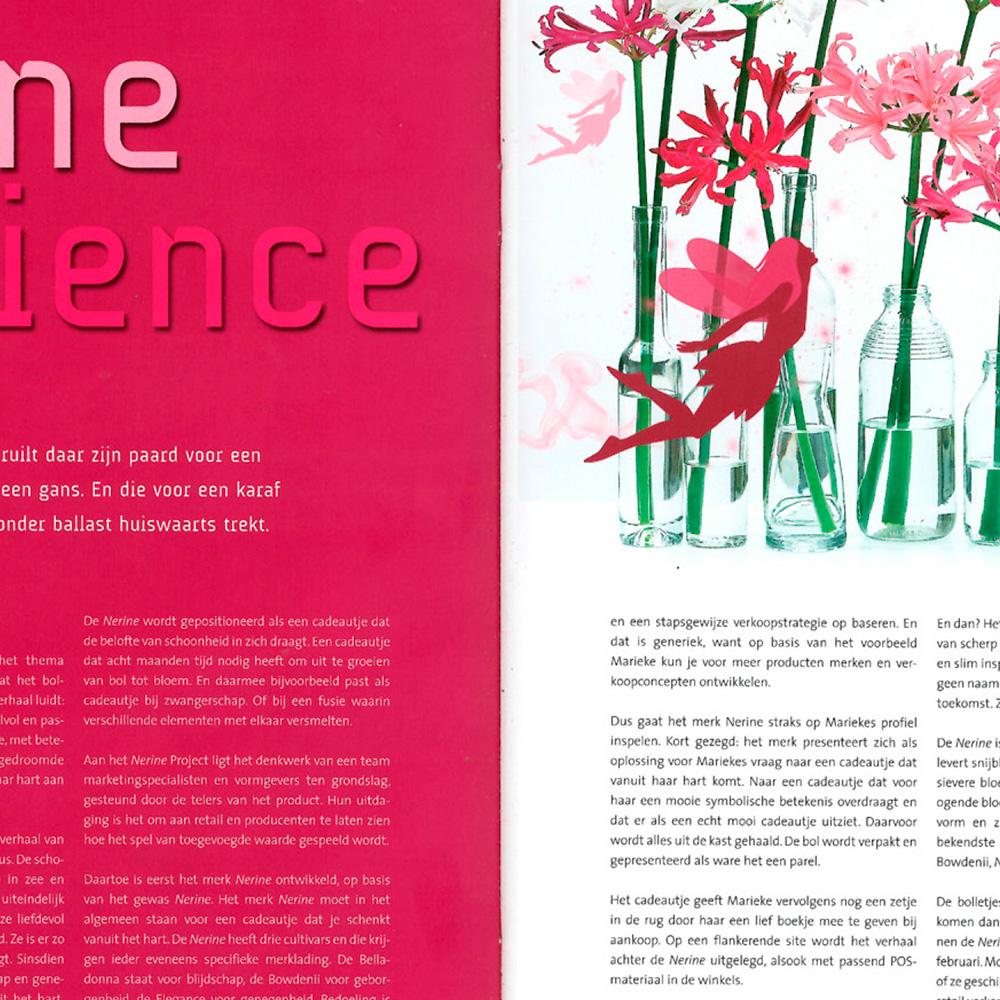 Nerine experience Garden Future 01-06-11