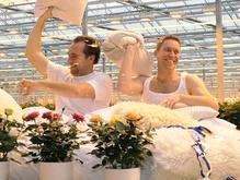 In bed met Marcel en Steef de Lange 21 januari 2013 Wie denkt dat Marcel en Steef de Lange van Nolina na het winnen van de OVA ondernemersprijs heerlijk op hun lauweren rusten, heeft het mis. Want – zo zeggen ze – als ondernemer moet je altijd bij de wekker blijven.