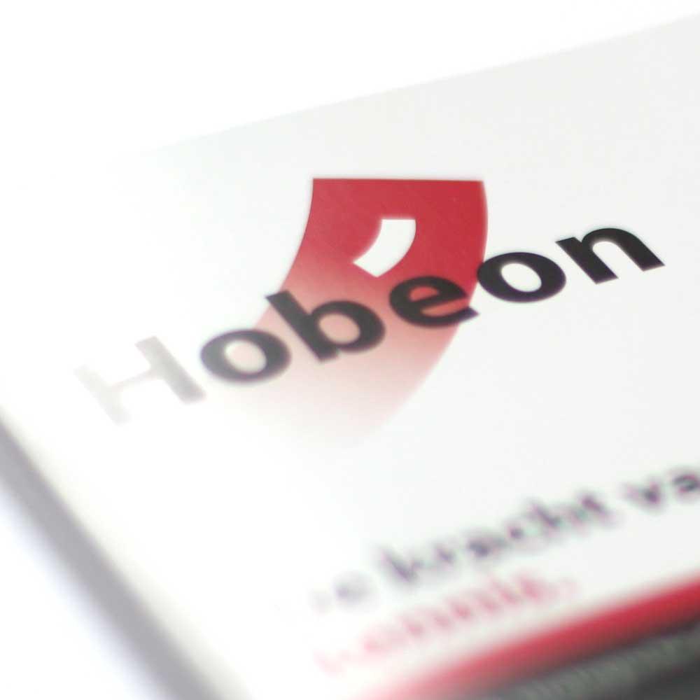 Onderwijs adviesbureau Hobeon