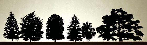 Produzione Privata trees 2