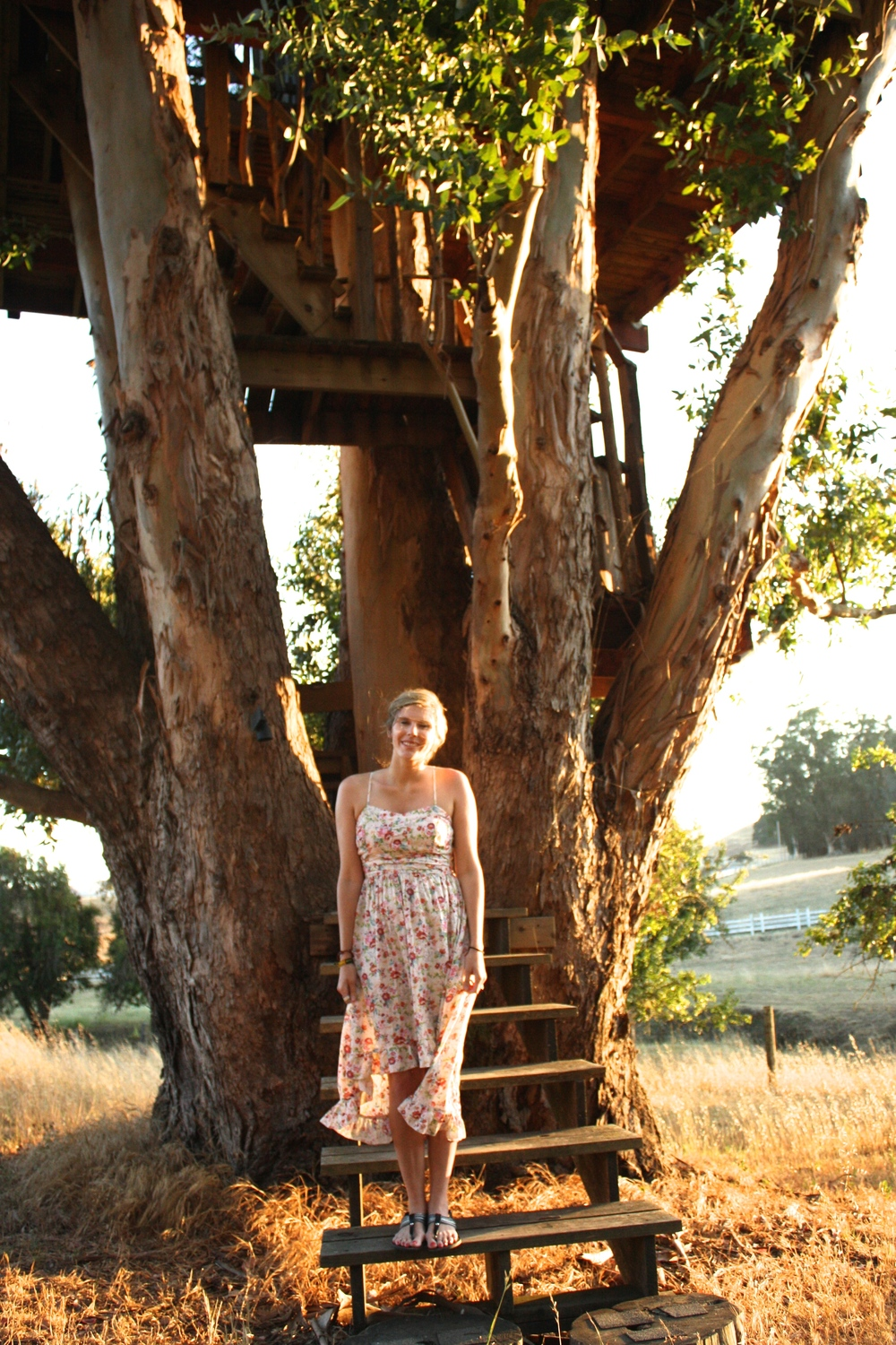 Our trip to Petaluma was AMAZING! We stayed in the  most glorious of treehouses !