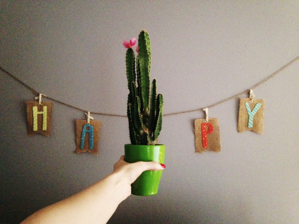 Brandon got me this cactus...and it makes me HAPPY.
