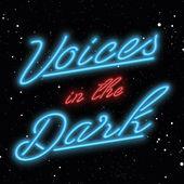 voices in the dark logo.jpg