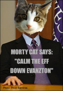 morty-cat2.jpg