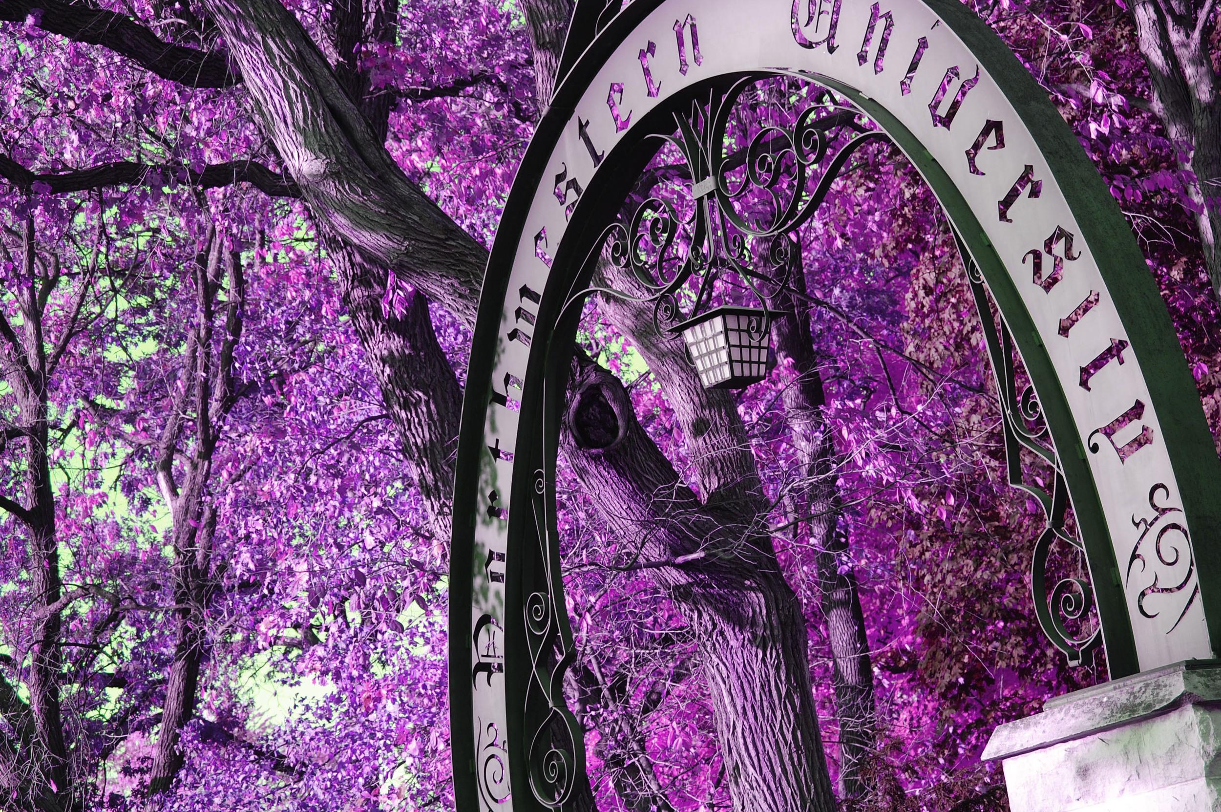 arch-purple