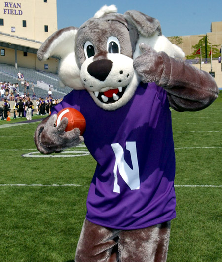 willie-the-wildcat1.jpg