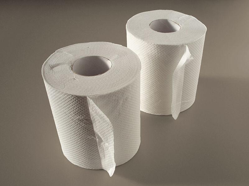 800px-Toilet_paper_20101110