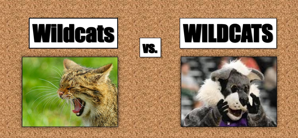 CATS-V-CATS-final-pdf-page-0011.jpg