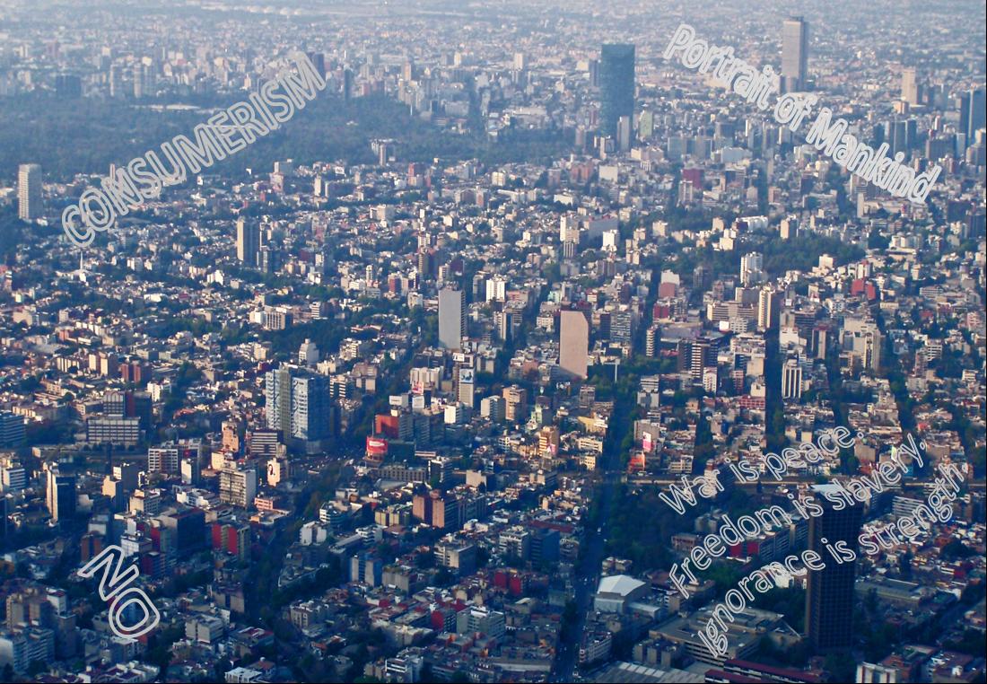 consumer city