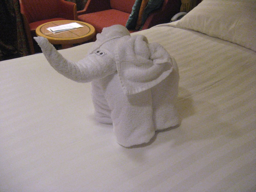 Every day, a new folded towel animal would greet Horton upon return to her room.