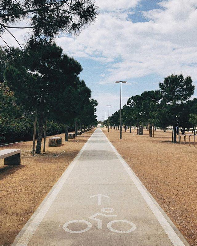 Мы даже в Афинах нашли велодорожку. Голландские привычки 😂 found the bike line even in Athens. 🚲