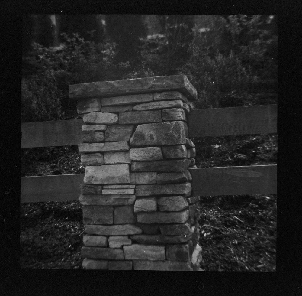 Diana+ Kodak Porta 400 B&W 3.jpg