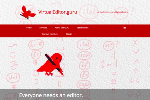VirtualEditor.Guru website