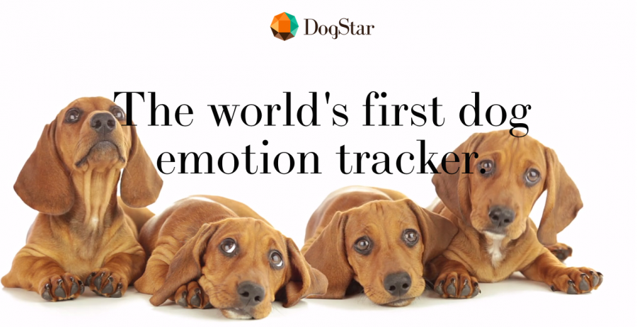 DogStar.life