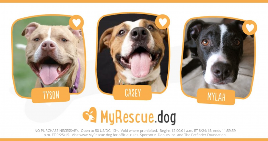 updated-dogs-social-share1-e1440435260826.png