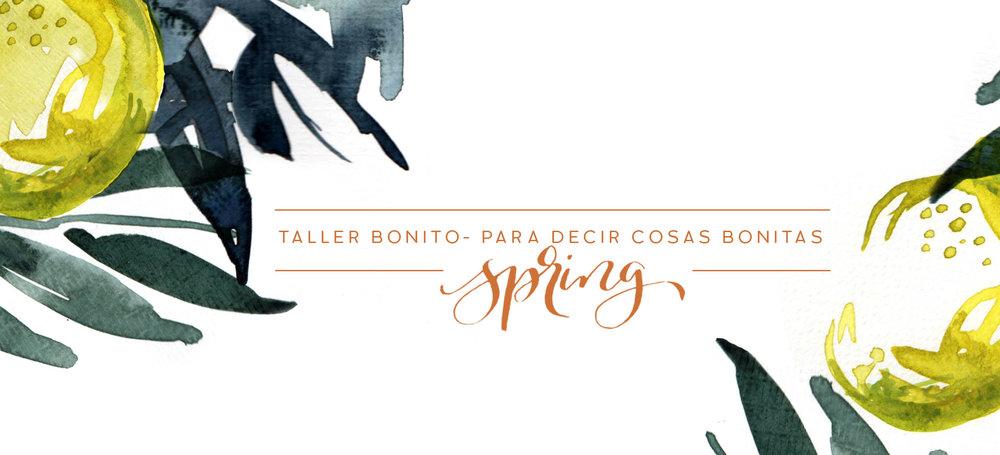 facebook_spring6.jpg