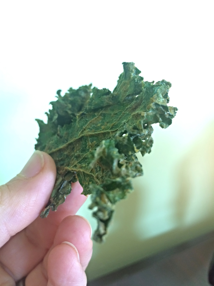 A Crispy, Crunchy, Healthy Raw SnackSpicy Nacho Kale Chips The