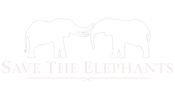 Flying Elephant Project