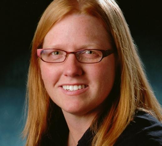 Distinguished Professor of Chemical and Biological Engineering University of Colorado, Boulder