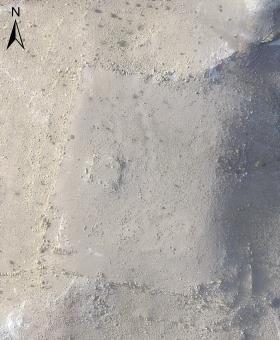Petra new discovery