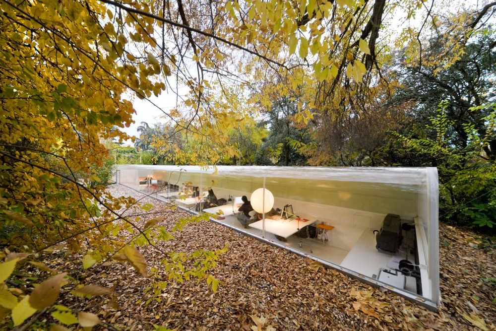 A gorgeous marriage of design and nature in Madrid.