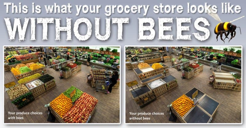 ventipop-bees