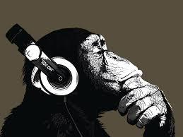 chimp.jpeg