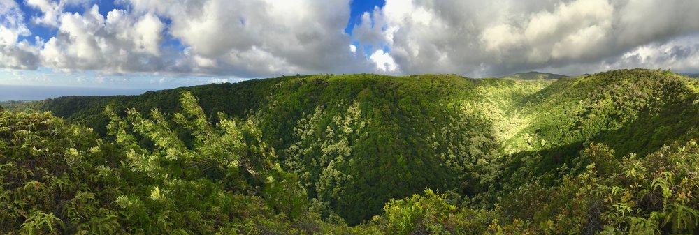 Maui Valley