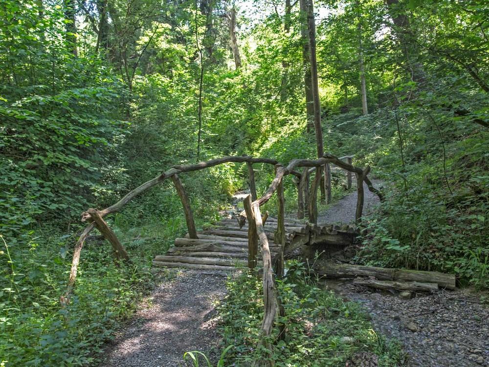 Brücke_Schaki_T8B3796.jpg