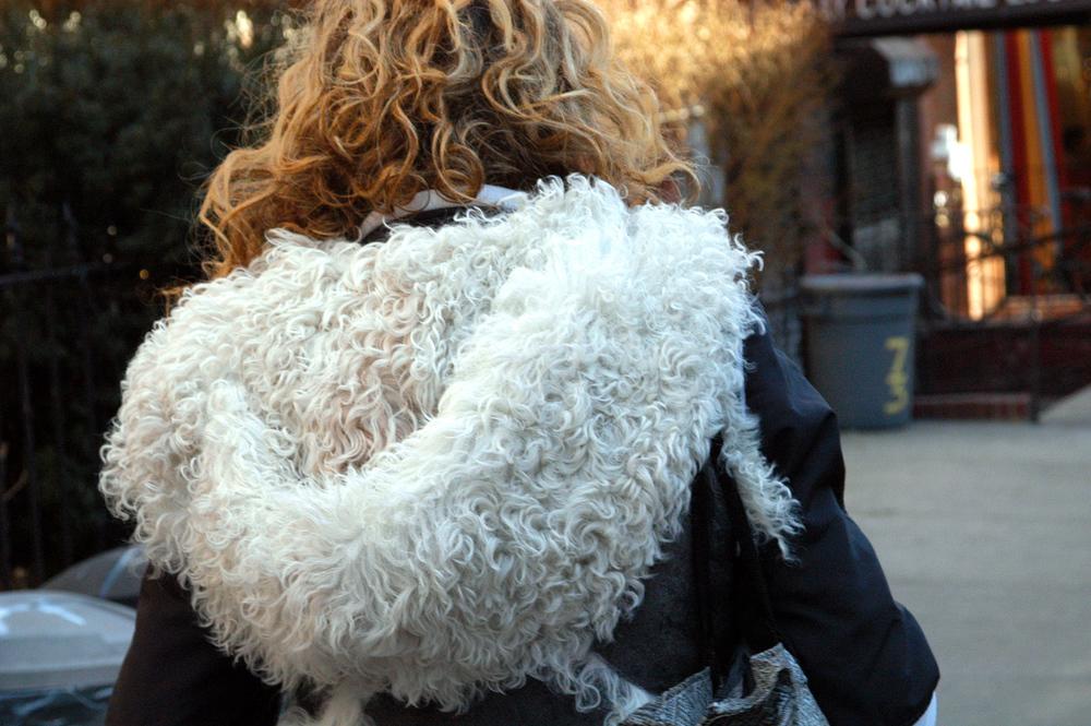 DSC_1690(curls).jpg