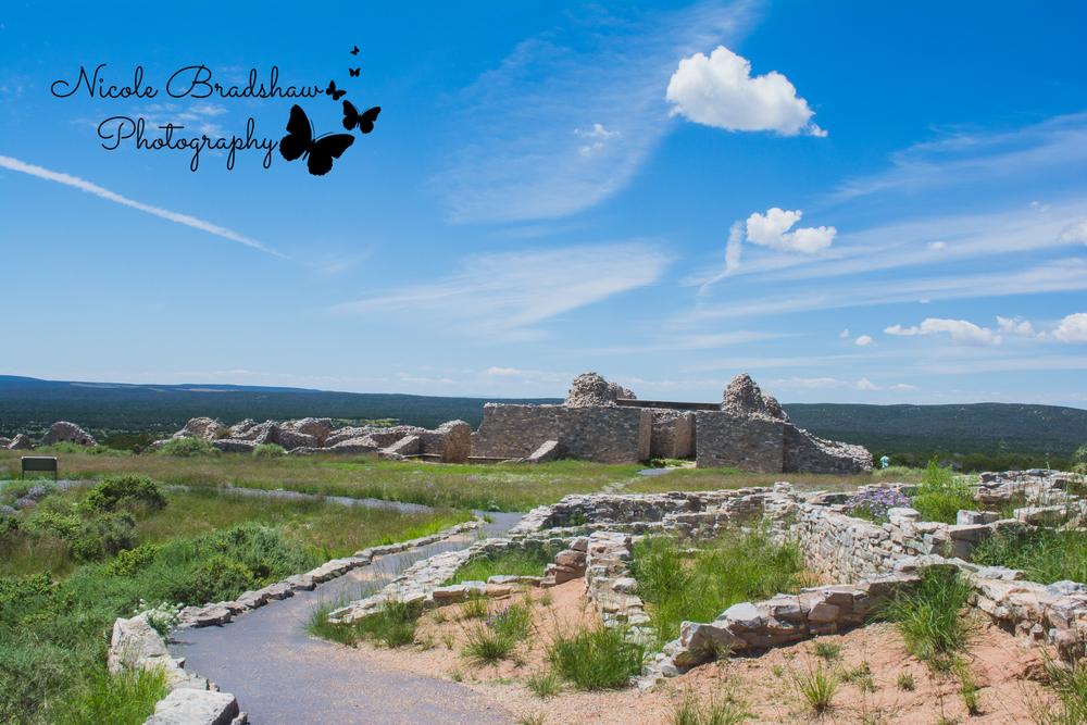Albuquerque-New-Mexico-Photographer