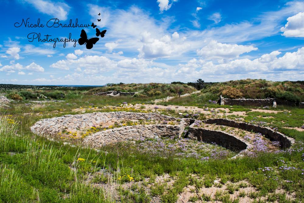Bosque Farms New Mexico Photographer, Peralta New Mexico Photographer, Los Lunas New Mexico Photographer, New Mexico Senior Photographer, New Mexico Wedding Photographer, Albuquerque Wedding Photographer, Santa Fe Wedding Photographer, Ruidoso New Mexico Photographer