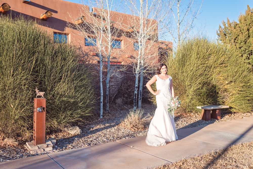 Nature Pointe Wedding and Event Center, outdoor wedding, New Mexico Wedding, Albuquerque wedding, New Mexico wedding venue, Albuquerque wedding venue, winter wedding, Maggie Sottero wedding gown, Rebecca Ingram wedding gown, bridal portrait