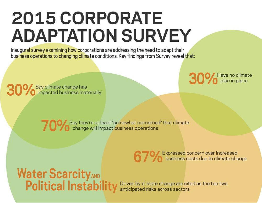 Corporate Adaptation Survey