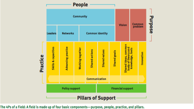 The 4 Ps of a Field Purpose People Practice Pilar.png