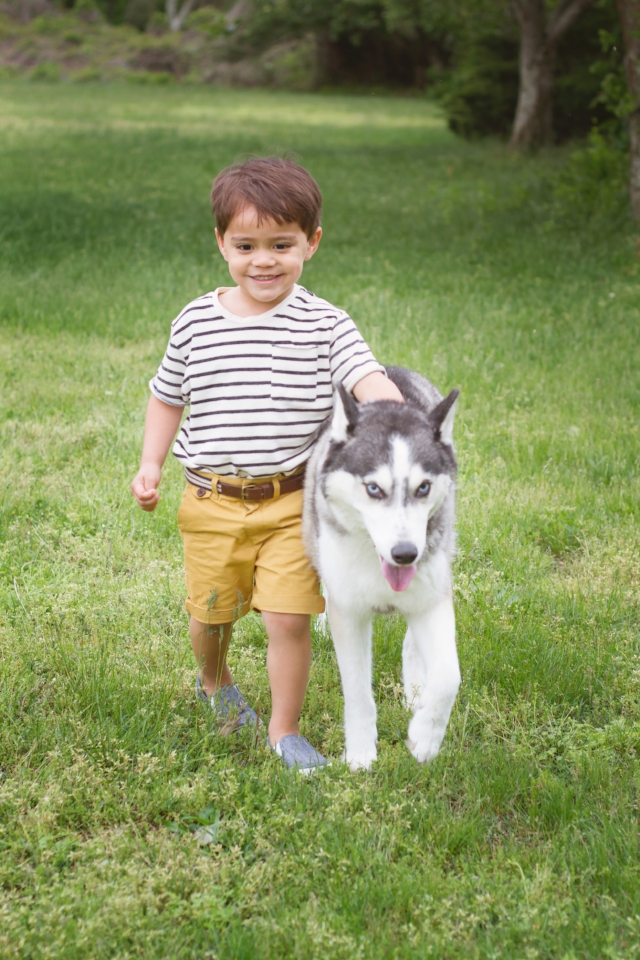 3 year old boy with pet husky dog outdoor session
