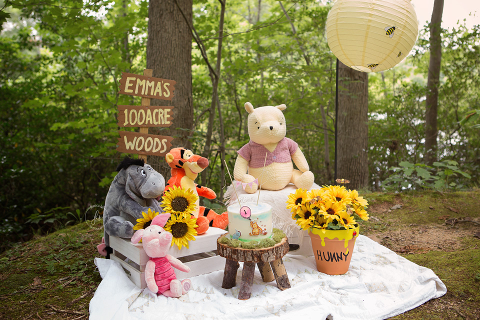 Winnie the Pooh cake smash setting in the woods